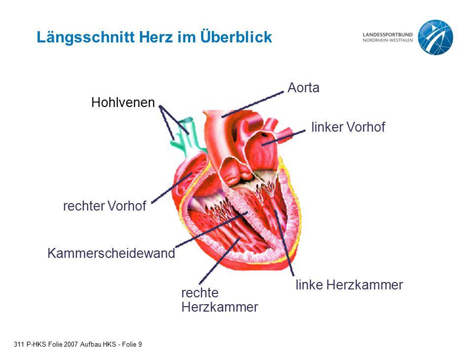 Längsschnitt Herz im Überblick Hohlvenen 311 P-HKS Folie 2007 Aufbau HKS - Folie 9 Aorta linker Vorhof linke Herzkammer rechte Herzkammer Kammerscheid