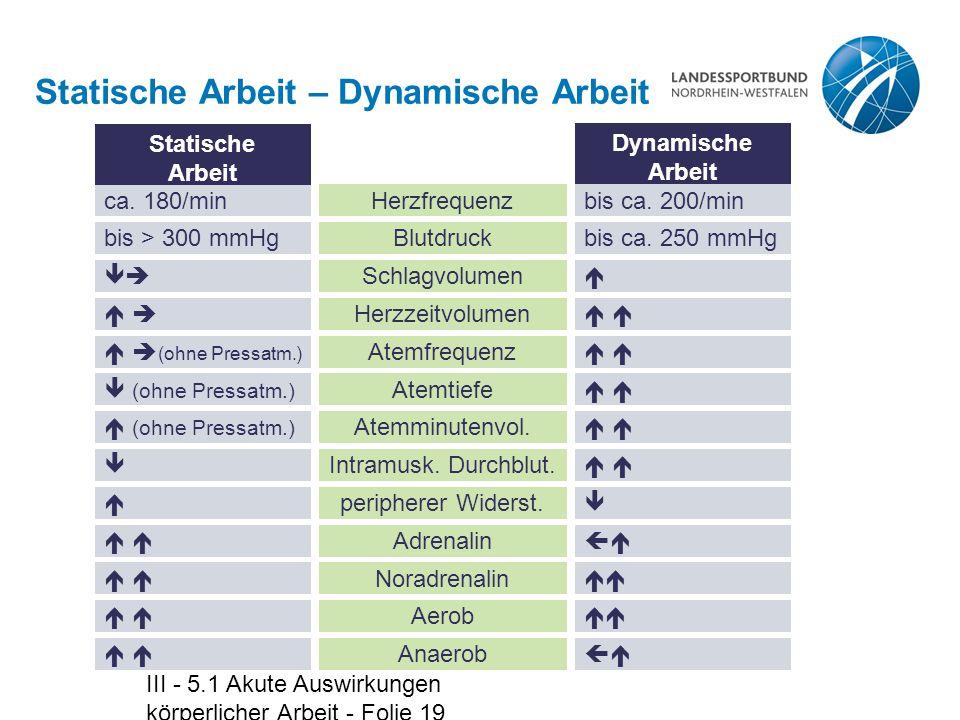 III - 5.1 Akute Auswirkungen körperlicher Arbeit - Folie 19 Statische Arbeit – Dynamische Arbeit ca. 180/minHerzfrequenz Statische Arbeit Dynamische A