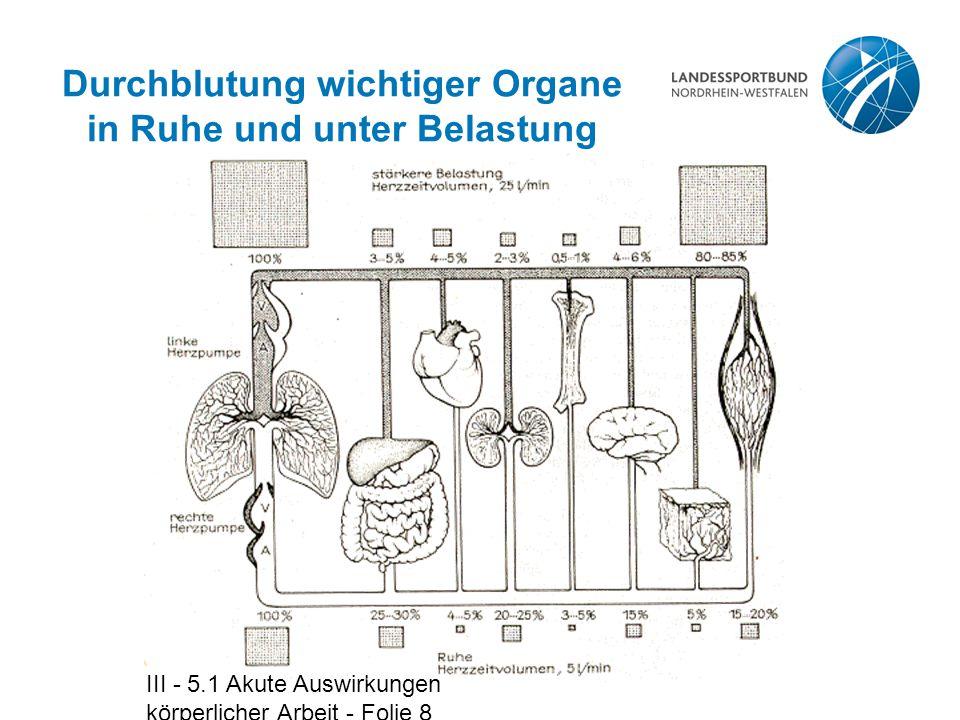 III - 5.1 Akute Auswirkungen körperlicher Arbeit - Folie 8 Durchblutung wichtiger Organe in Ruhe und unter Belastung