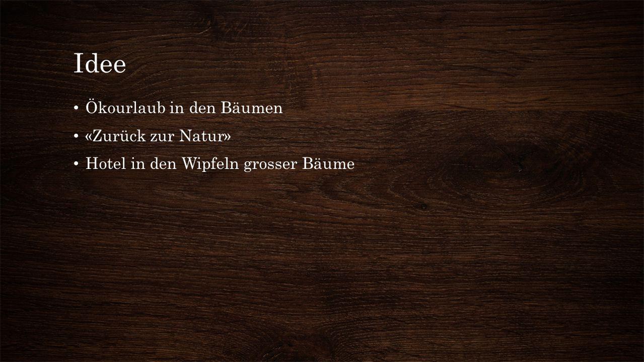 Idee Ökourlaub in den Bäumen «Zurück zur Natur» Hotel in den Wipfeln grosser Bäume