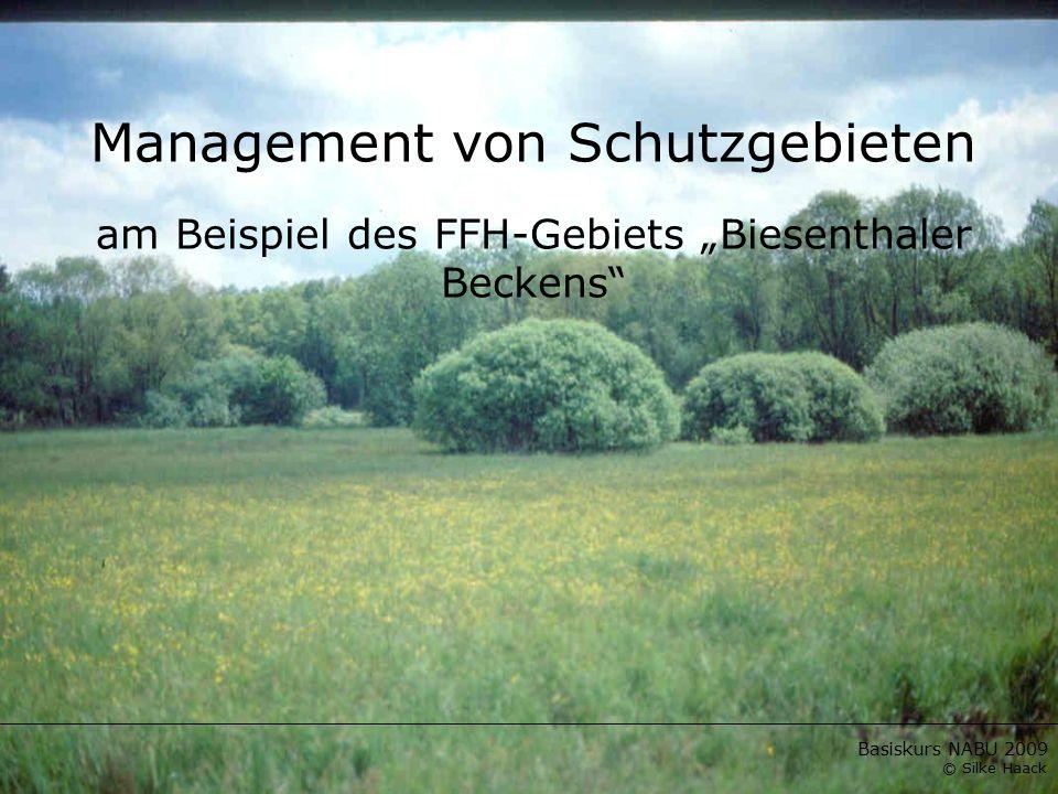 "Basiskurs NABU 2009 © Silke Haack Management von Schutzgebieten am Beispiel des FFH-Gebiets ""Biesenthaler Beckens"""