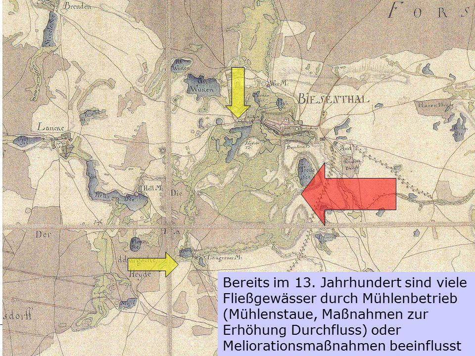 Basiskurs NABU 2009 © Silke Haack Bereits im 13. Jahrhundert sind viele Fließgewässer durch Mühlenbetrieb (Mühlenstaue, Maßnahmen zur Erhöhung Durchfl