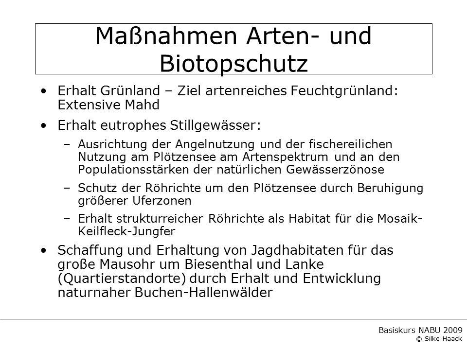 Basiskurs NABU 2009 © Silke Haack Maßnahmen Arten- und Biotopschutz Erhalt Grünland – Ziel artenreiches Feuchtgrünland: Extensive Mahd Erhalt eutrophe