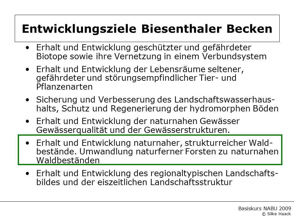 Basiskurs NABU 2009 © Silke Haack Erhalt und Entwicklung geschützter und gefährdeter Biotope sowie ihre Vernetzung in einem Verbundsystem Erhalt und E