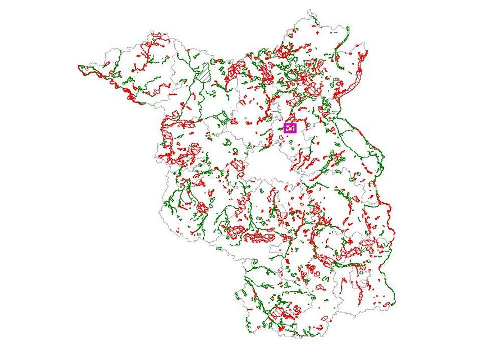 Basiskurs NABU 2009 © Silke Haack Bewertung Zustand Vergleich: –Ist-Zustand zu Optimalzustand Biotoptyp / Habitat / Population –Für Biotope außerdem: Ist-Zustand und natürliches Entwicklungspotenzial des Standorts