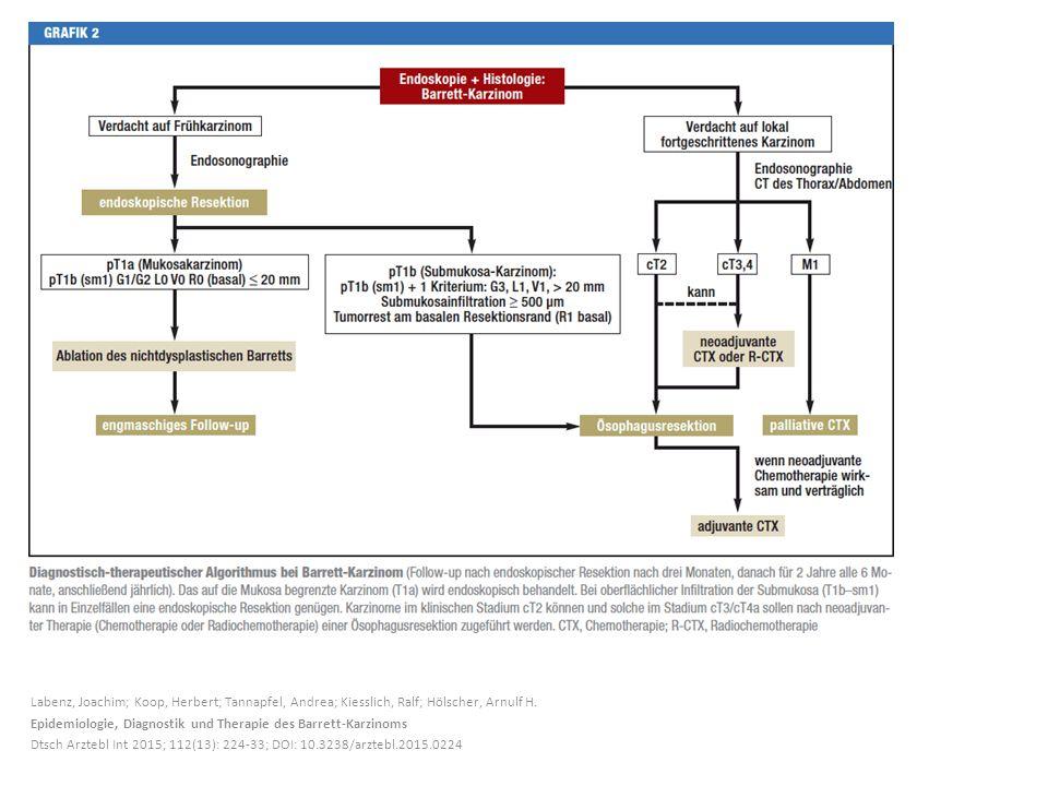 Labenz, Joachim; Koop, Herbert; Tannapfel, Andrea; Kiesslich, Ralf; Hölscher, Arnulf H. Epidemiologie, Diagnostik und Therapie des Barrett-Karzinoms D