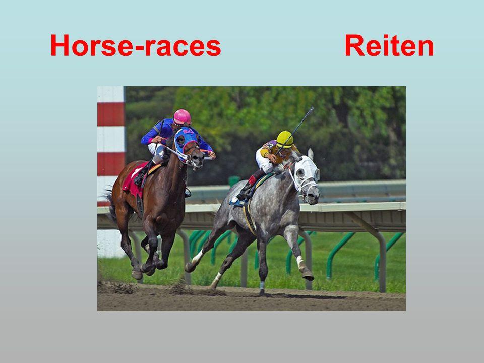 Horse-races Reiten