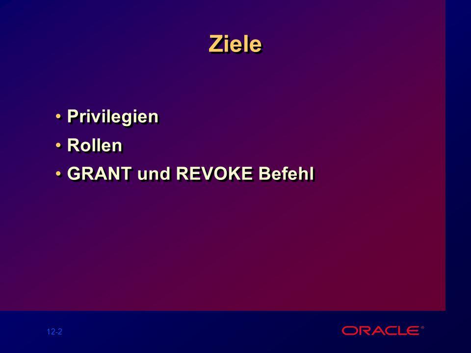 12-2 Ziele Privilegien Rollen GRANT und REVOKE Befehl Privilegien Rollen GRANT und REVOKE Befehl