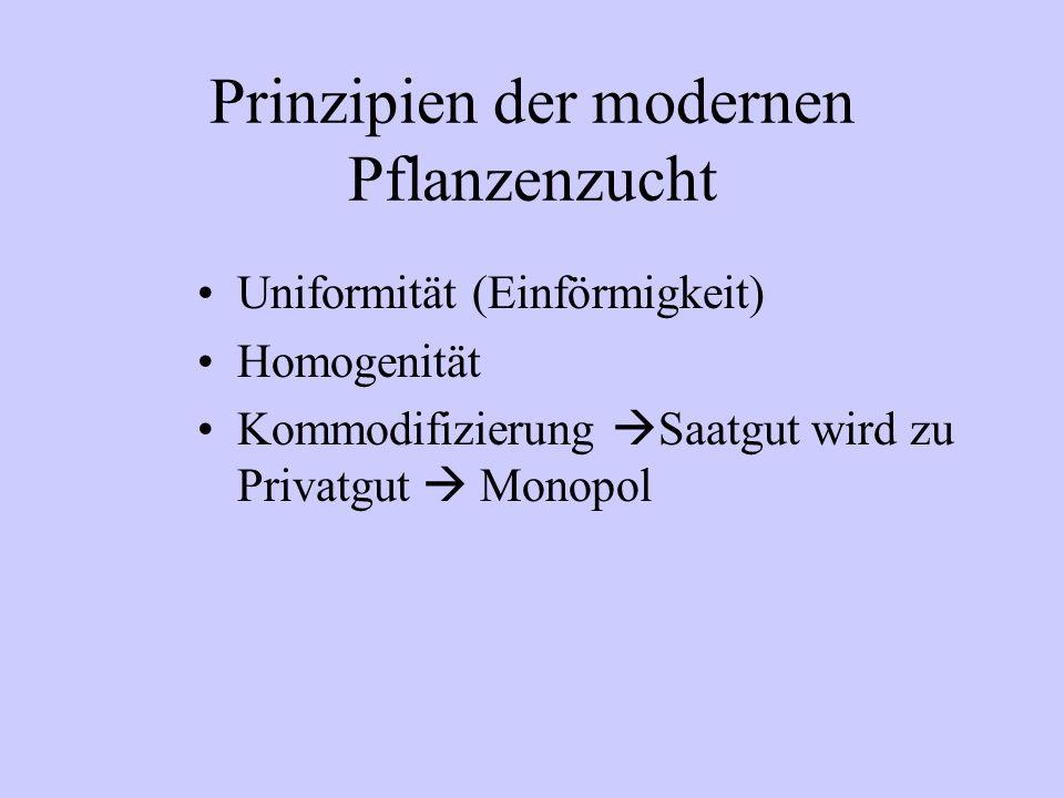 Prinzipien der modernen Pflanzenzucht Uniformität (Einförmigkeit) Homogenität Kommodifizierung  Saatgut wird zu Privatgut  Monopol