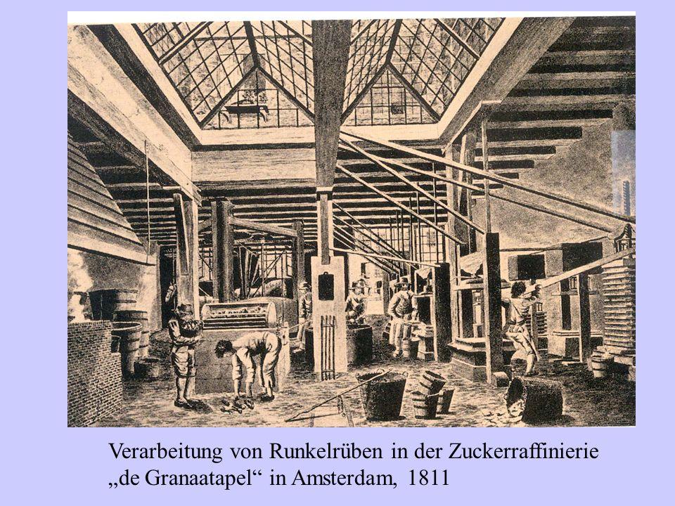 """Verarbeitung von Runkelrüben in der Zuckerraffinierie """"de Granaatapel"""" in Amsterdam, 1811"""