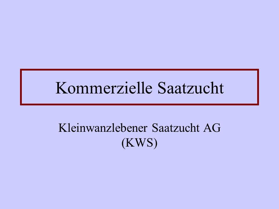 Kommerzielle Saatzucht Kleinwanzlebener Saatzucht AG (KWS)