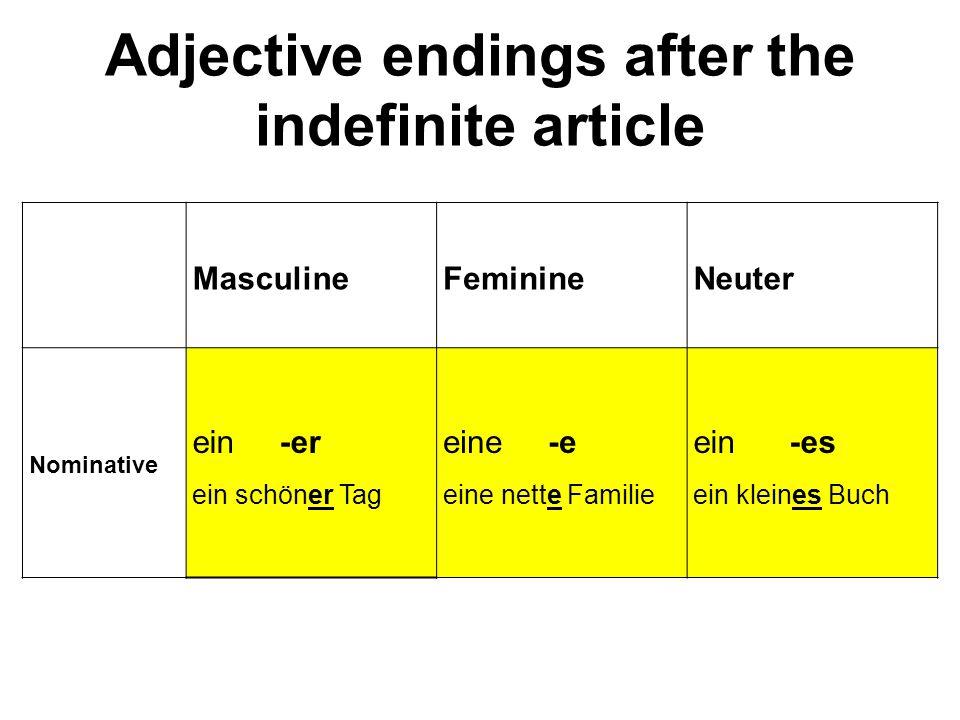 Adjective endings after the indefinite article MasculineFeminineNeuter Nominative ein -er ein schöner Tag eine -e eine nette Familie ein -es ein klein