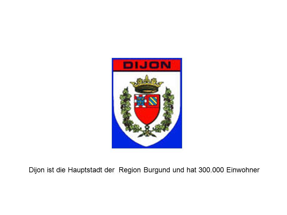 Dijon ist die Hauptstadt der Region Burgund und hat 300.000 Einwohner