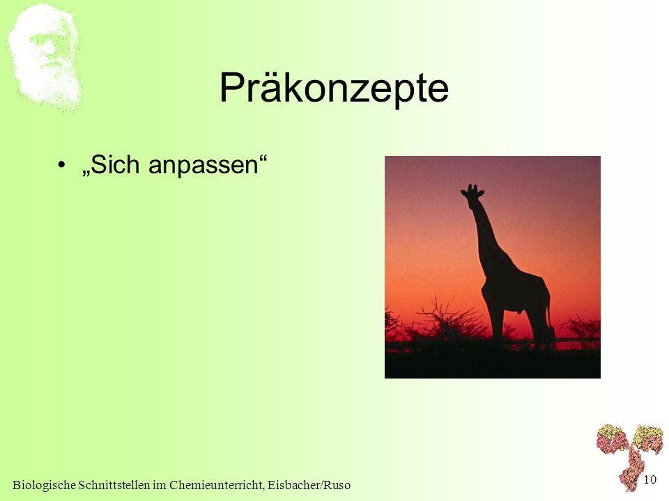 """Biologische Schnittstellen im Chemieunterricht, Eisbacher/Ruso 10 Präkonzepte """"Sich anpassen"""""""