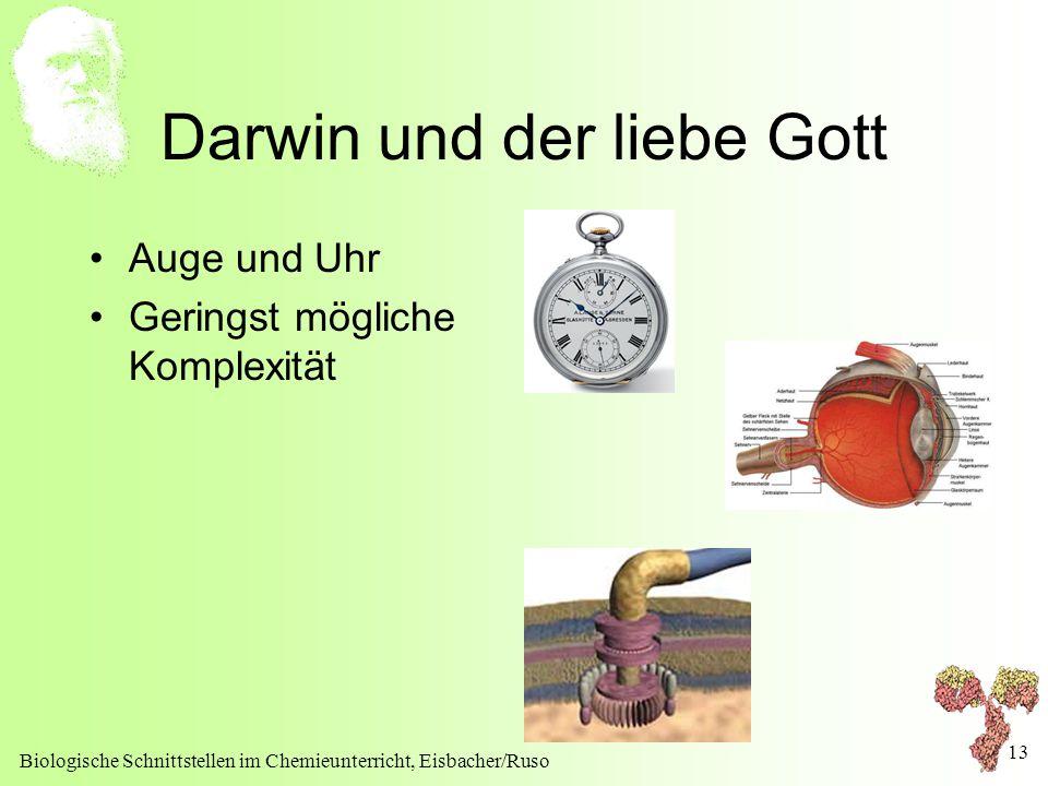 Biologische Schnittstellen im Chemieunterricht, Eisbacher/Ruso 13 Darwin und der liebe Gott Auge und Uhr Geringst mögliche Komplexität