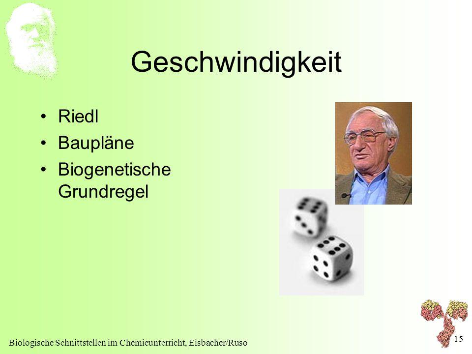 Biologische Schnittstellen im Chemieunterricht, Eisbacher/Ruso 15 Geschwindigkeit Riedl Baupläne Biogenetische Grundregel