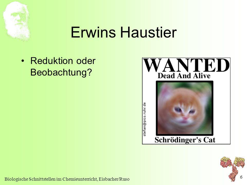 Biologische Schnittstellen im Chemieunterricht, Eisbacher/Ruso 6 Erwins Haustier Reduktion oder Beobachtung?