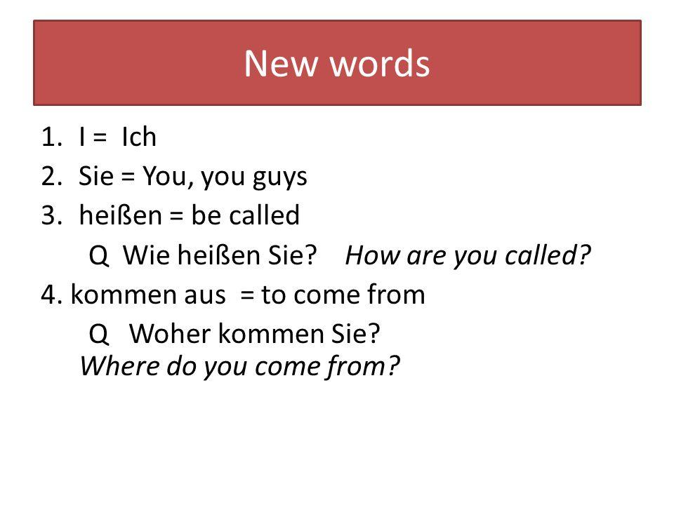 Introducing and Greeting 1 C = Claudia R = Robert C: Guten Tag.