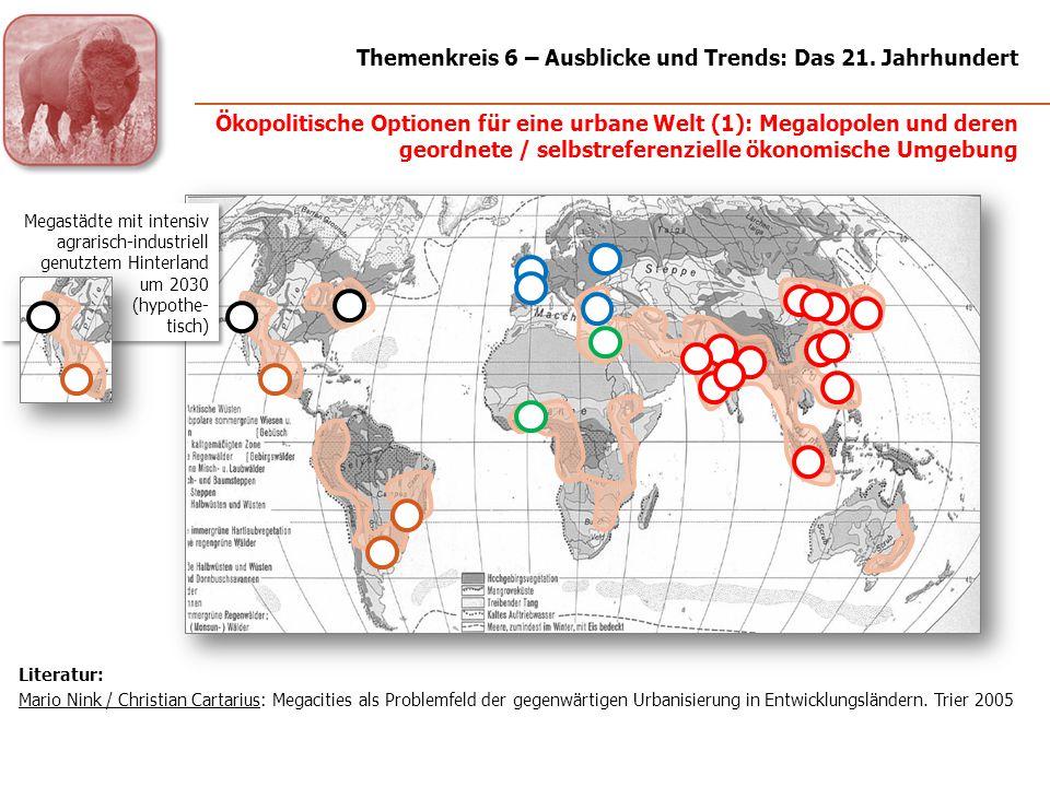 Megastädte mit intensiv agrarisch-industriell genutztem Hinterland um 2030 (hypothe- tisch) Ökopolitische Optionen für eine urbane Welt (1): Megalopol