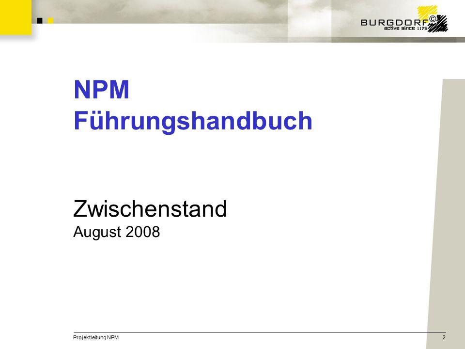Projektleitung NPM2 NPM Führungshandbuch Zwischenstand August 2008