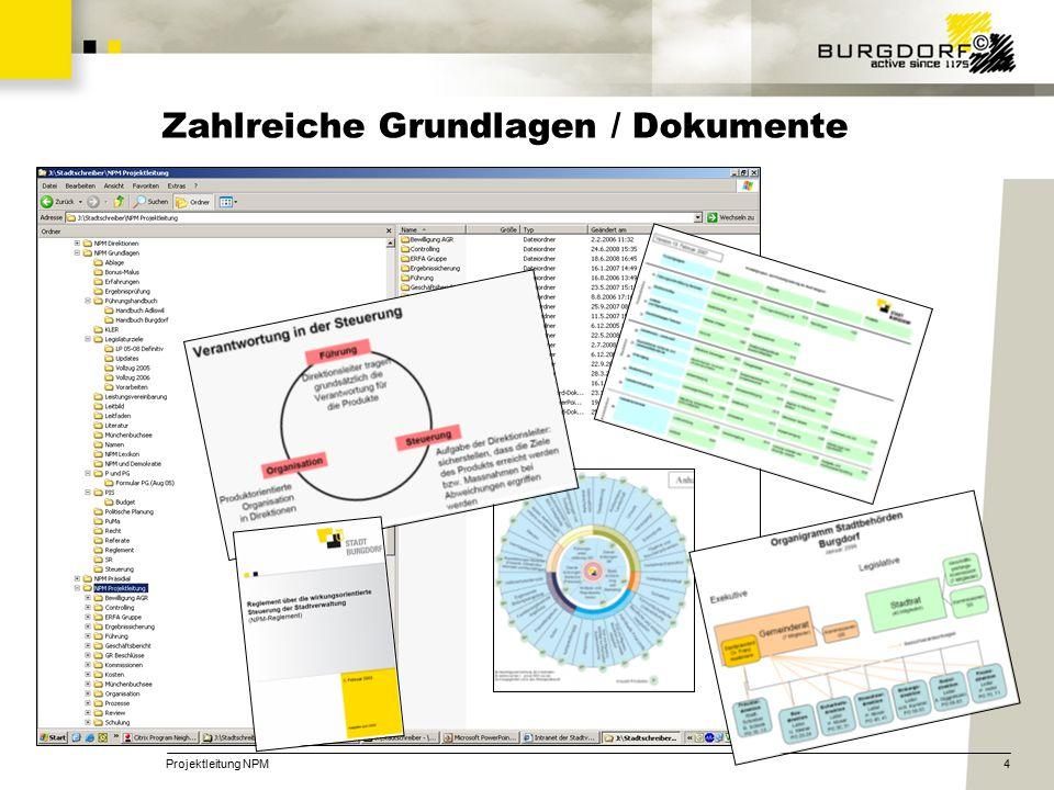 Projektleitung NPM4 Zahlreiche Grundlagen / Dokumente