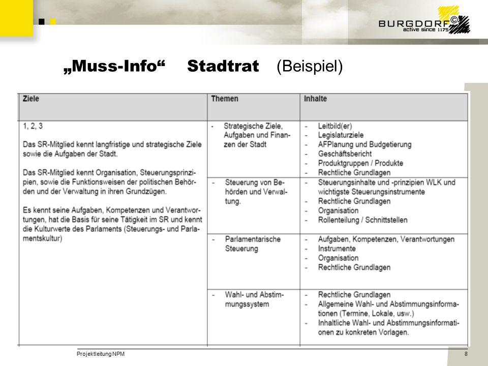 """Projektleitung NPM8 """"Muss-Info Stadtrat (Beispiel)"""