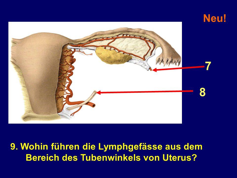 9. Wohin führen die Lymphgefässe aus dem Bereich des Tubenwinkels von Uterus? Neu! 7 8