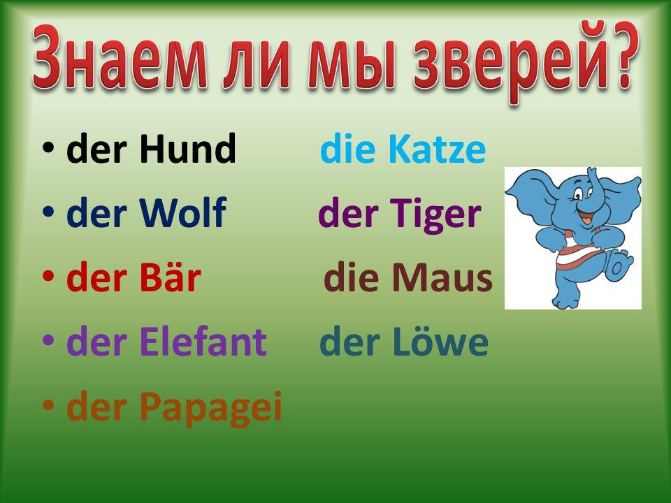 der Hund die Katze der Wolf der Tiger der Bär die Maus der Elefant der Löwe der Papagei
