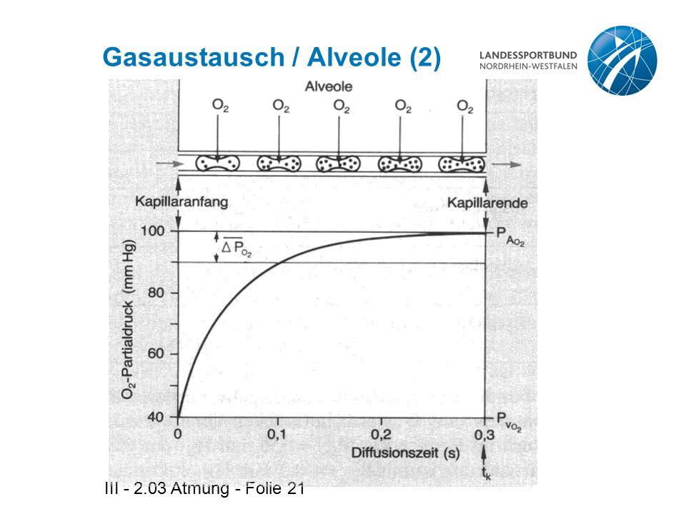 III - 2.03 Atmung - Folie 21 Gasaustausch / Alveole (2)