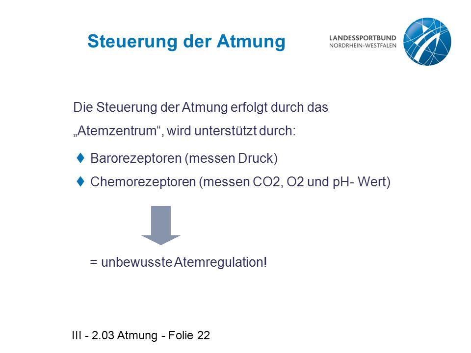 III - 2.03 Atmung - Folie 22 Steuerung der Atmung  Barorezeptoren (messen Druck)  Chemorezeptoren (messen CO2, O2 und pH- Wert) Die Steuerung der At