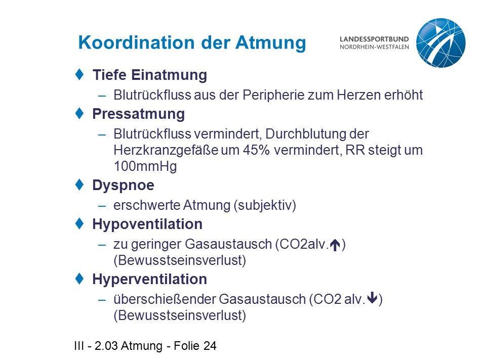 III - 2.03 Atmung - Folie 24 Koordination der Atmung  Tiefe Einatmung –Blutrückfluss aus der Peripherie zum Herzen erhöht  Pressatmung –Blutrückflus