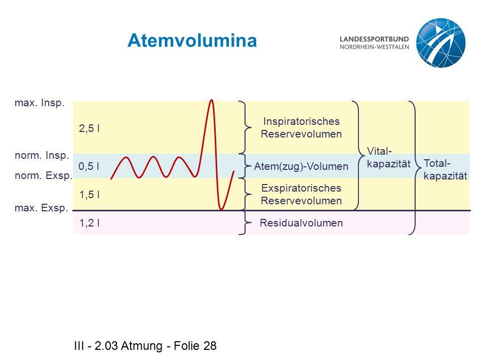 III - 2.03 Atmung - Folie 28 Atemvolumina 2,5 l 1,2 l 0,5 l 1,5 l Inspiratorisches Reservevolumen Atem(zug)-Volumen Exspiratorisches Reservevolumen Re