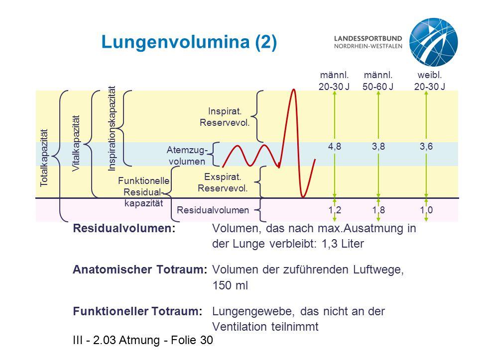 III - 2.03 Atmung - Folie 30 Lungenvolumina (2) Residualvolumen: Volumen, das nach max.Ausatmung in der Lunge verbleibt: 1,3 Liter Anatomischer Totrau