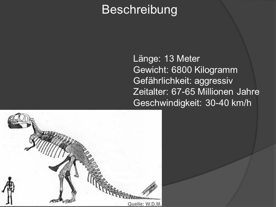 Beschreibung Länge: 13 Meter Gewicht: 6800 Kilogramm Gefährlichkeit: aggressiv Zeitalter: 67-65 Millionen Jahre Geschwindigkeit: 30-40 km/h