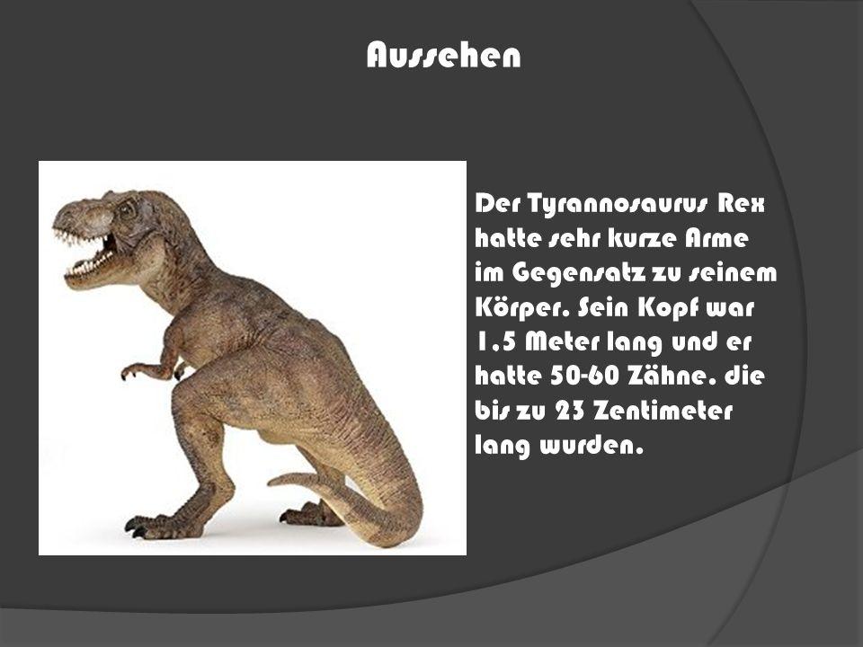Der Tyrannosaurus Rex hatte sehr kurze Arme im Gegensatz zu seinem Körper. Sein Kopf war 1,5 Meter lang und er hatte 50-60 Zähne. die bis zu 23 Zentim
