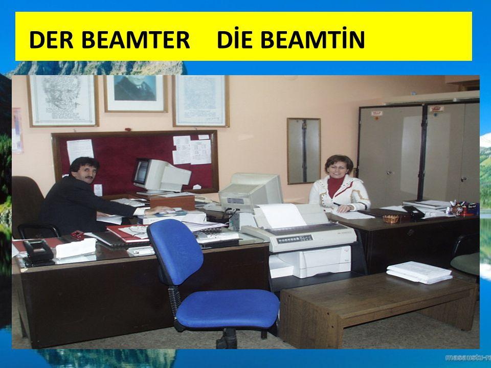 DER BEAMTER DİE BEAMTİN
