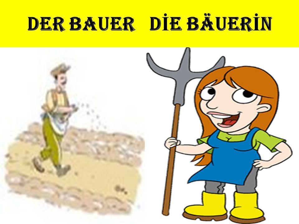 DER BAUER D İ E BÄUER İ N