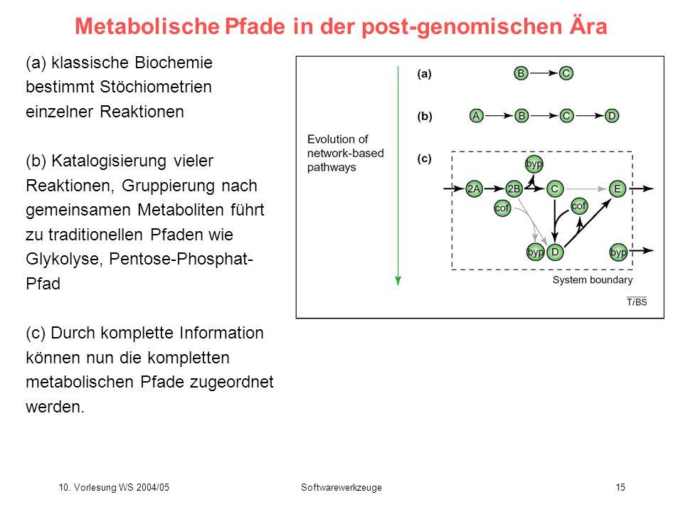 10. Vorlesung WS 2004/05Softwarewerkzeuge15 Metabolische Pfade in der post-genomischen Ära (a) klassische Biochemie bestimmt Stöchiometrien einzelner