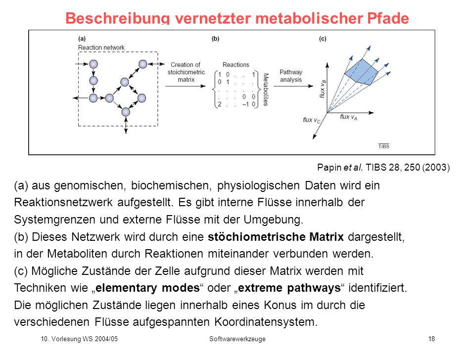 10. Vorlesung WS 2004/05Softwarewerkzeuge18 Beschreibung vernetzter metabolischer Pfade (a) aus genomischen, biochemischen, physiologischen Daten wird