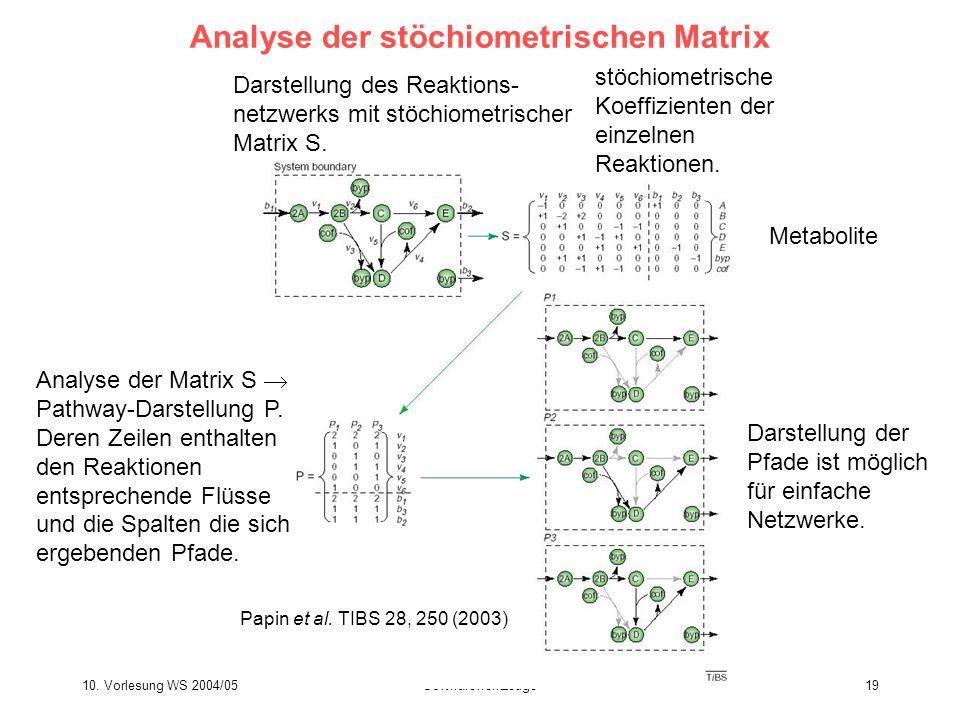 10. Vorlesung WS 2004/05Softwarewerkzeuge19 Analyse der stöchiometrischen Matrix Analyse der Matrix S  Pathway-Darstellung P. Deren Zeilen enthalten