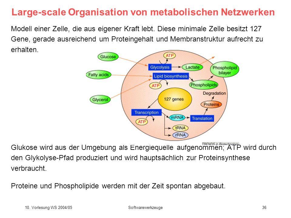 10. Vorlesung WS 2004/05Softwarewerkzeuge36 Large-scale Organisation von metabolischen Netzwerken Modell einer Zelle, die aus eigener Kraft lebt. Dies