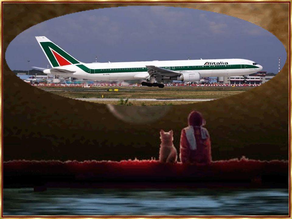 """Pilot einer Alitalia, dem ein Blitzschlag das halbe Cockpit lahm gelegt hat: """"Bei uns ist fast alles ausgefallen."""