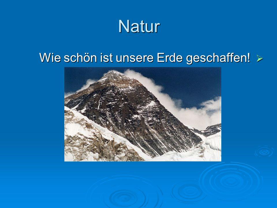 Die Aufgaben  Gruppe 1: Natürliche Eigenschaften der Erde  Suchen Sie Antwoten für die folgenden Fragen.