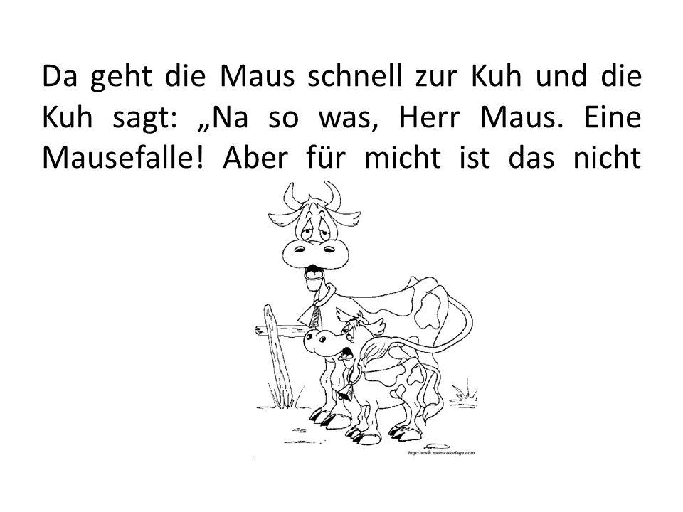 """Da geht die Maus schnell zur Kuh und die Kuh sagt: """"Na so was, Herr Maus."""