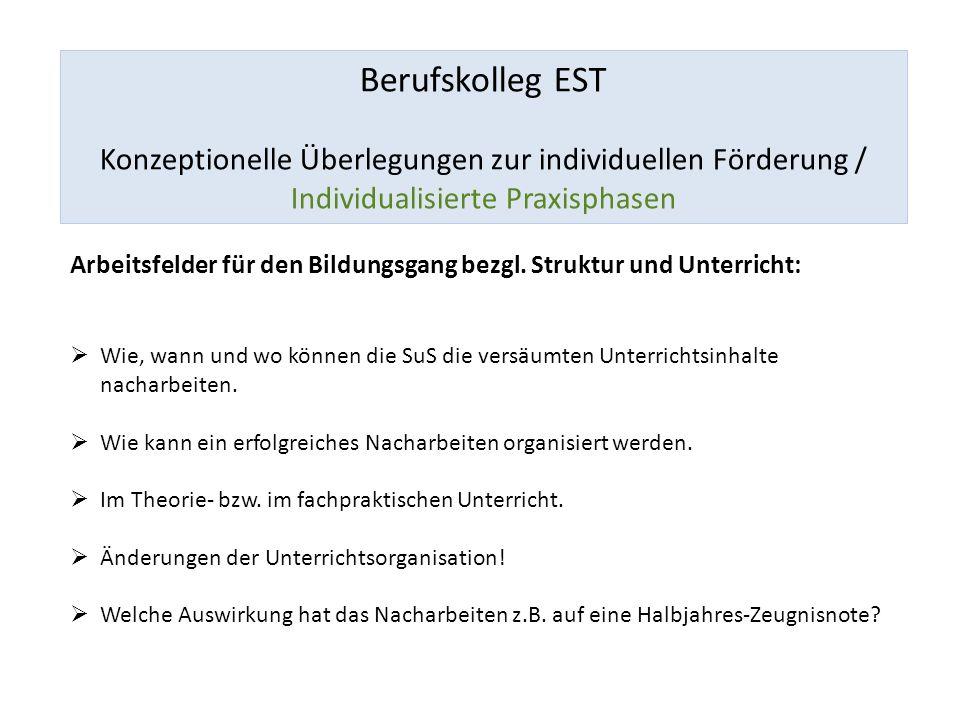 Berufskolleg EST Konzeptionelle Überlegungen zur individuellen Förderung / Individualisierte Praxisphasen Arbeitsfelder für den Bildungsgang bezgl.