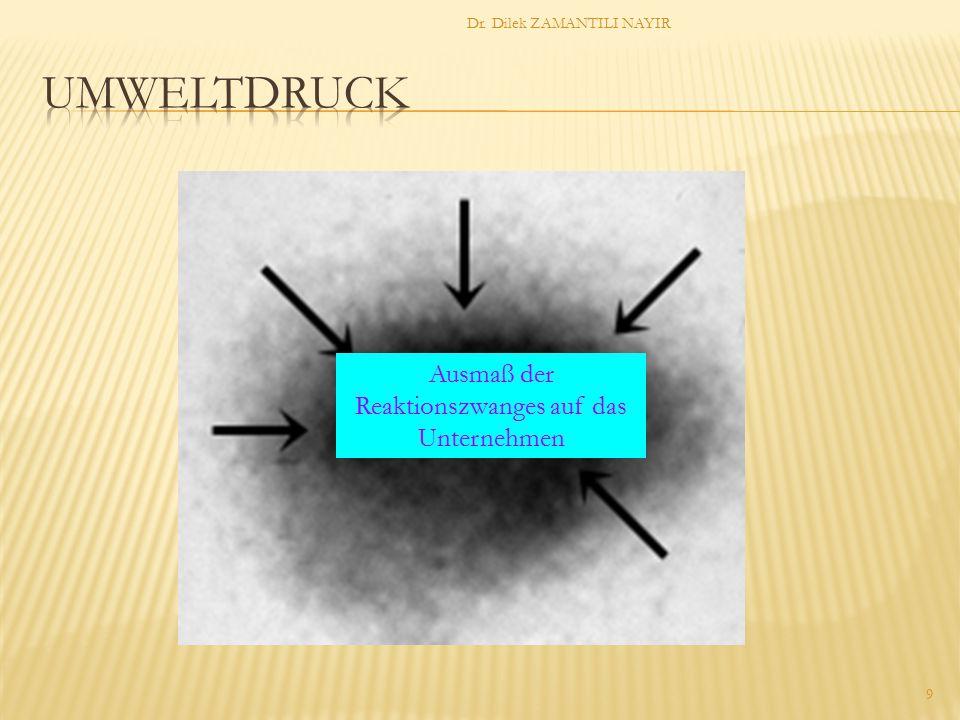 Dr. Dilek ZAMANTILI NAYIR 9 Ausmaß der Reaktionszwanges auf das Unternehmen