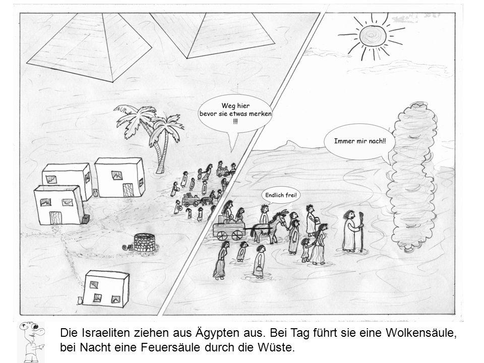 Die Israeliten ziehen aus Ägypten aus. Bei Tag führt sie eine Wolkensäule, bei Nacht eine Feuersäule durch die Wüste.