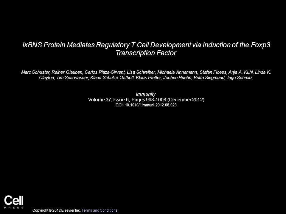 IκBNS Protein Mediates Regulatory T Cell Development via Induction of the Foxp3 Transcription Factor Marc Schuster, Rainer Glauben, Carlos Plaza-Sirve