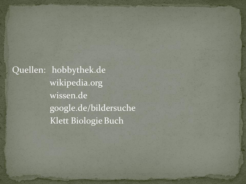 Quellen: hobbythek.de wikipedia.org wissen.de google.de/bildersuche Klett Biologie Buch