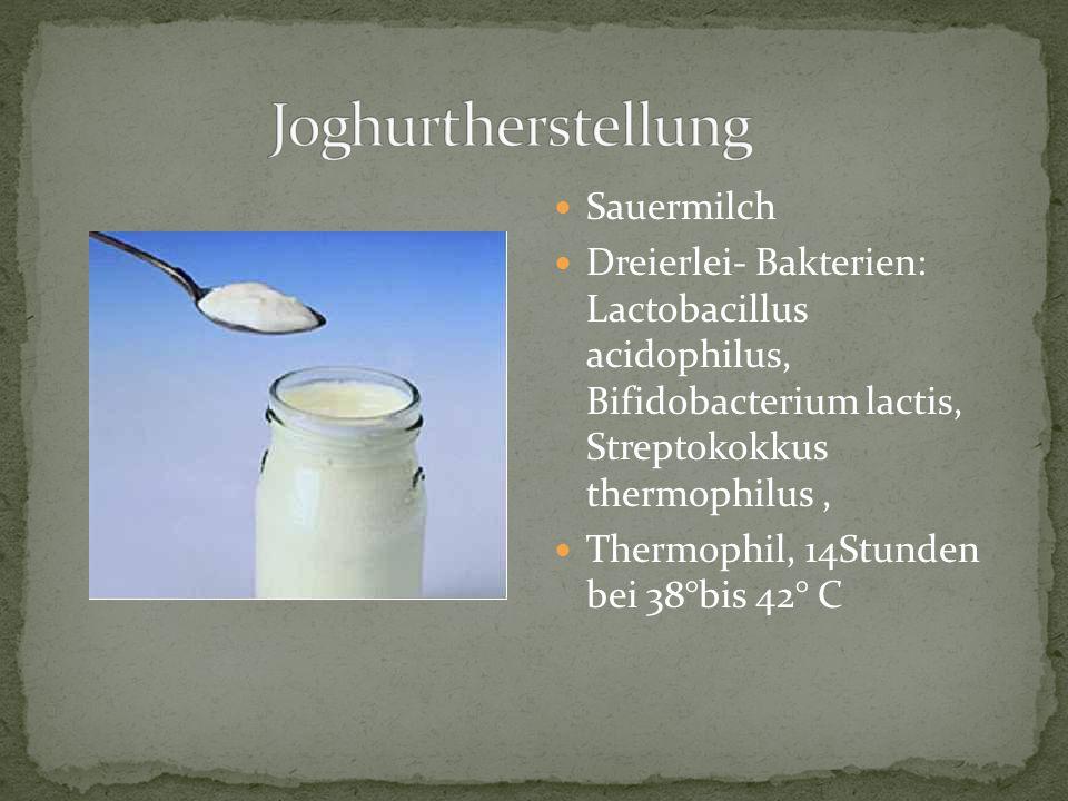 Sauermilch Dreierlei- Bakterien: Lactobacillus acidophilus, Bifidobacterium lactis, Streptokokkus thermophilus, Thermophil, 14Stunden bei 38°bis 42° C
